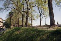 春のルッカに行って来ました - フィレンツェ田舎生活便り2