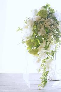 着々と成長のディプロマ生たち、投げ入れもきれいに(^^♪ - お花に囲まれて
