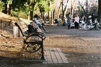 Snap No172 - MASIなPhoto Life