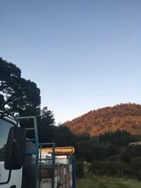 秋も天候不順か!? - みつばちとニュージーランドで暮らす PicoMiere