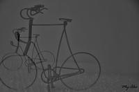 自転車(多重露出) - 空 太陽 雲 and 花