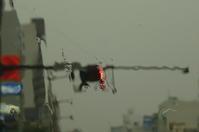 雨の日の仕事。「助手席はスペシャルシート!不思議な世界に遭遇」編。 - ドライフラワーギャラリー⁂ふくことカフェ