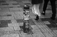 ゆっくり歩く - 東京エフニブ