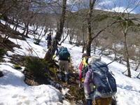 今日のお気に入り写真雪が多く残る 藤原岳(1,171M) に登る - 風の便り