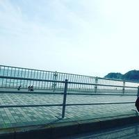 家族で鎌倉へ - 末森陽子のおもてなし会