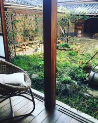4月初めの中庭より〜 芽吹きの季節 〜 - Bon Copain!