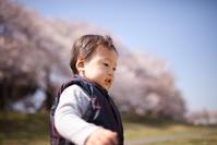 桜の季節がやってきた大宮公園のお花見 - Full of LIFE
