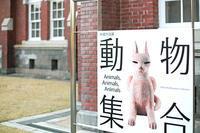 満開らしい・九段あたり-2 2017年4月 - 暗 箱 夜 話 【弐 號】