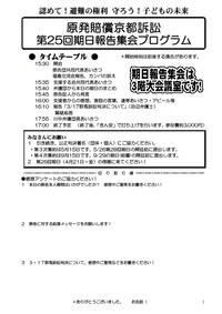 第25回期日報告集会プログラム - 原発賠償訴訟・京都原告団を支援する会