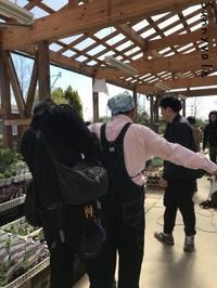 趣味園オフショット&One-day Lesson 多肉植物の会4月 - さにべるスタッフblog     -Sunny Day's Garden-
