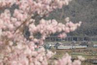 春の窓 - PTT+.