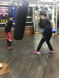 ボクシングが生命を守るのか…? - 本多ボクシングジムのSEXYジャーマネ日記