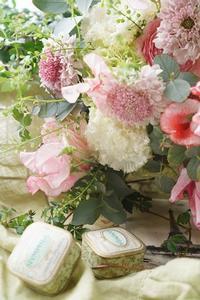 アイロニー花の色気が欲しい☆ - お花に囲まれて