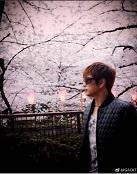 GACKTさん10分間の桜見物 - 風恋華Diary