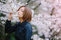 桜 - 西園寺ゆめまろの華麗なる半生
