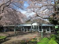 2021年04月 - 神奈川徒歩々旅