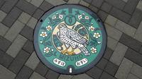 マンホールカード8枚目ゲット、瑞穂町郷土資料館けやき館で。そして箱根ヶ崎駅へ。 - 蜃気楼の如く