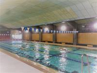 水泳同好会の雰囲気 - 東北大学水泳同好会