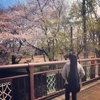 4月は始まりの季節 - Naturally Music*子どもと音楽+英語のある暮らし