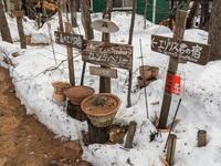 融けた雪の下は・・5か月前のタイムカプセル - 十勝・中札内村「森の中の日記」~café&宿カンタベリー~
