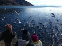 冬の琵琶湖 - Soubou blog -想ヒ アヤオリ-