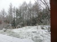 4月11日の雪! - 風路のこぶちさわ日記