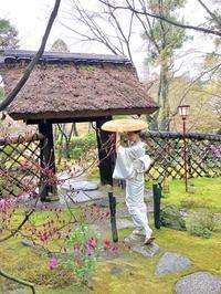 老舗料亭「八勝館」にて春の茶事 - 八巻多鶴子が贈る 華麗なるジュエリー・デイズ