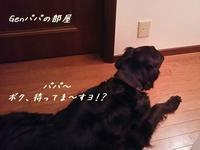 お留守番 - Genki DaysⅡ