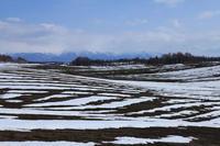 4月の富良野・美瑛② - Photo Of 北海道大陸