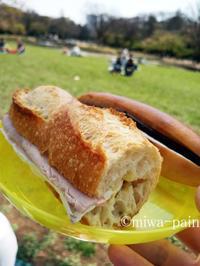 【今週も】タルイパンで代々木公園ピクニック - パンある日記(仮)@この世にパンがある限り。
