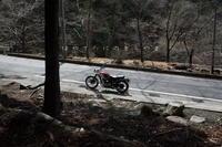 もうすっかり春ですね - 疾風谷の皿山…陶芸とオートバイと古伊万里と