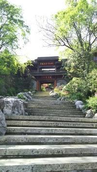 中国茶葉博物館へ - お茶をどうぞ♪