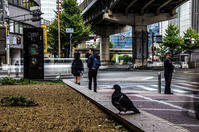 1秒間の写真の世界(その7) - 写真の散歩道