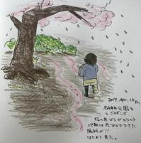 桜花びら風紋 - 一天一画   Yuki Goto