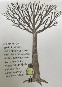 木を見て思った - 一天一画   Yuki Goto