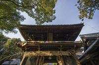国宝建築128石手寺二王門(愛媛県松山市) - 国宝建築・日本全国の町々を撮り歩く旅。