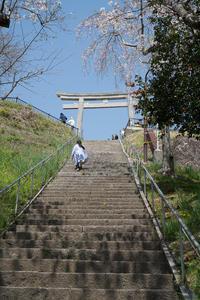 #3019 日和山公園-お花見日和 (5) - 14番目の月