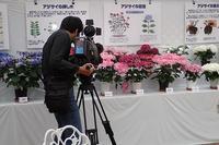 NHK様が取材に来られました! - 手柄山温室植物園ブログ 『山の上から花だより』