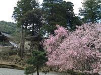 日本海を西へ西への旅4/18 - つくしんぼ日記 ~徒然編~