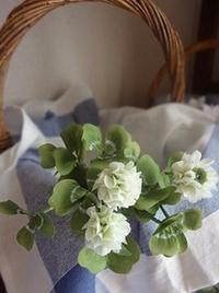 クローバーの花 - handmade flower maya