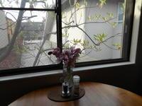 木の芽時の憂鬱 - あの日、あの時、あの場所で