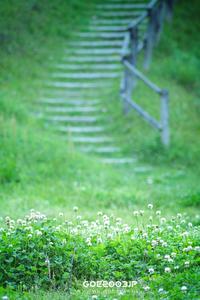 ☆ シロツメクサ飾りのある階段 ☆ - Trimming