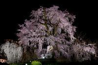 Kyotoful - 2017 spring - #1 - NINE'S EDITION