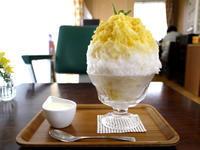 関西ミックスジュースのかき氷 【鵠沼海岸 Kohori-noan 埜庵(のあん)】 - ぶらり湘南