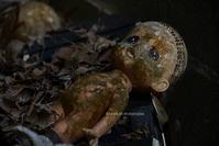 Doll graveyard(人形の墓場) - Mark.M.Watanabeの熊本撮影紀行