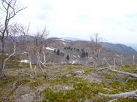 雨乞岳 ~ イブネ ~ 最後の目的の山クラシに登る - 風の便り