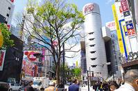 4月25日(火)今日の渋谷109前交差点 - でじたる渋谷NEWS