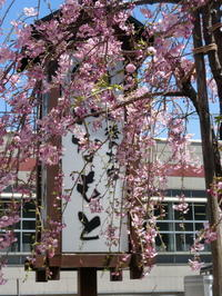 4月23(日)~25(火)越後湯沢に行ってきました - 柴又亀家おかみの独り言