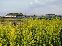 臨時北斗星の思い出…(ヒガハス編) - 8001列車の旅と撮影記録