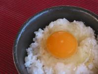 「卵黄色と安全性②」 - 自然卵農家の農村ブログ 「歩荷の暮らし」